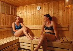 Sauna / Steam Room / Hot Tub