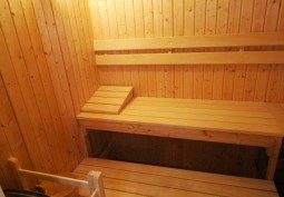 Sauna / Steam Room