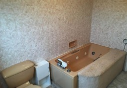 Bathroom (Retro)
