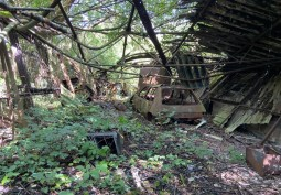 7 Acre Forested Area With Derelict Buildings For Filming