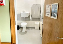 Toilet, Disability Features