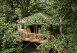 Treehouse For Filming